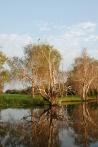 Kakadu National Park - Yellow Water Cruises