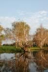Kakadu National Park - Yellow Water Cruises