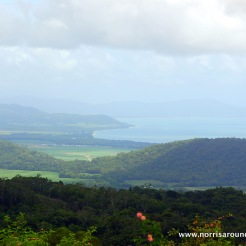 Rex Highway Lookout on our way to Port Douglas